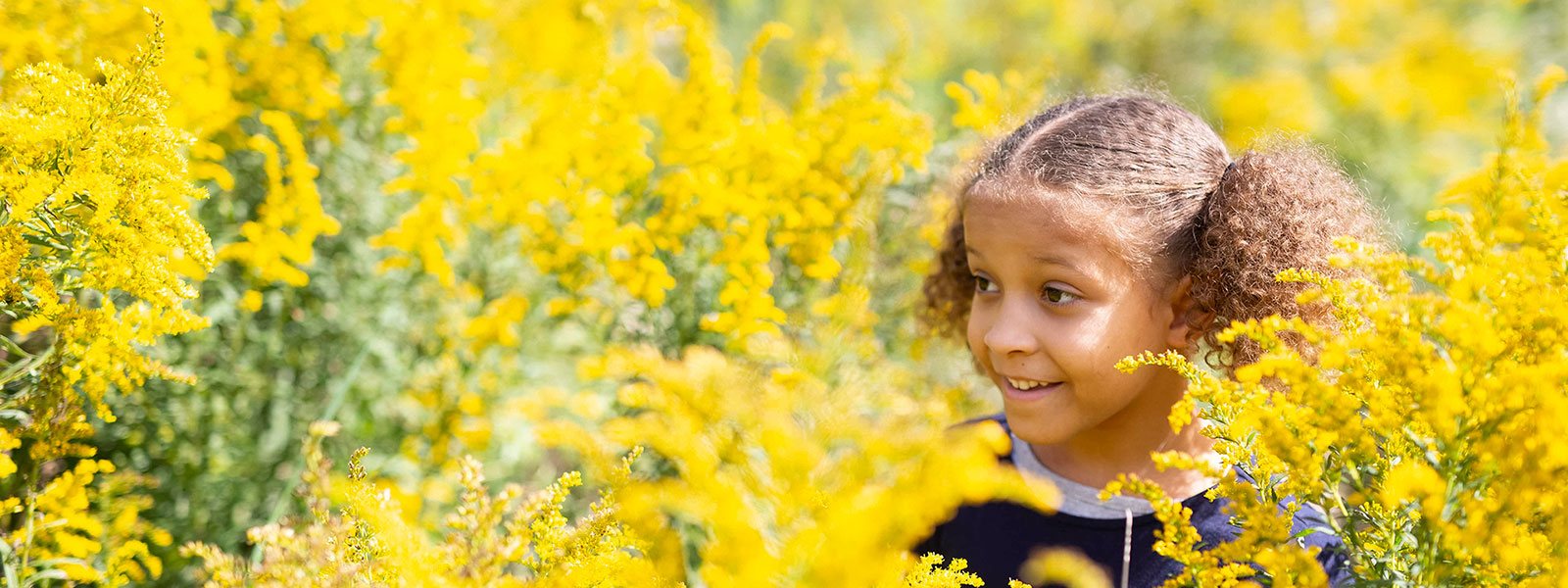 Girl in a field of Golden Rod in Southern Michigan
