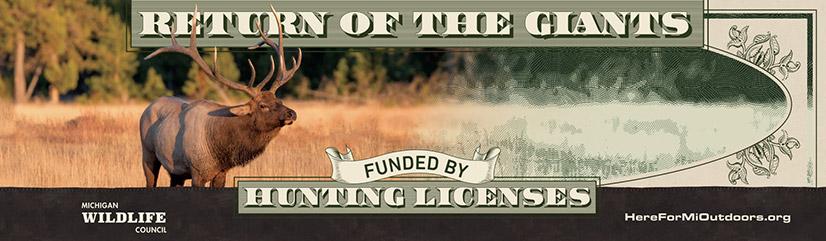 Billboard of elk photo fading into paper bill style