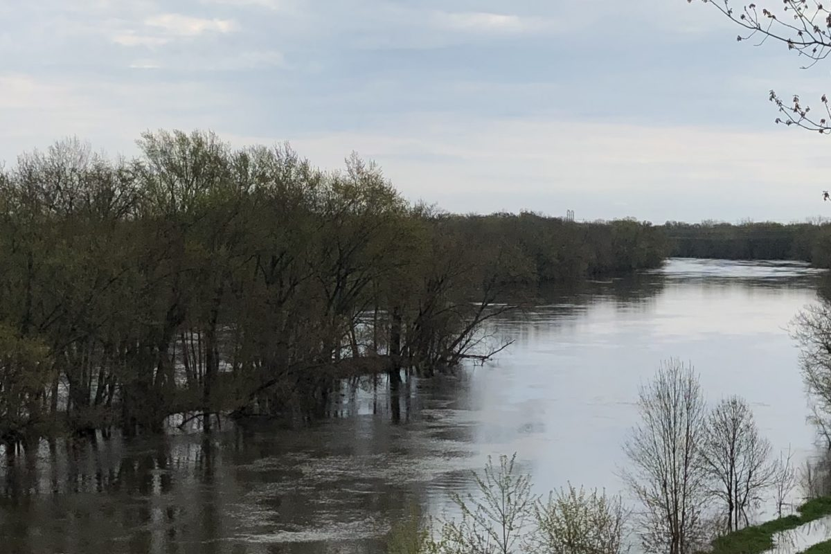 Grand River at Grand Ravines Park