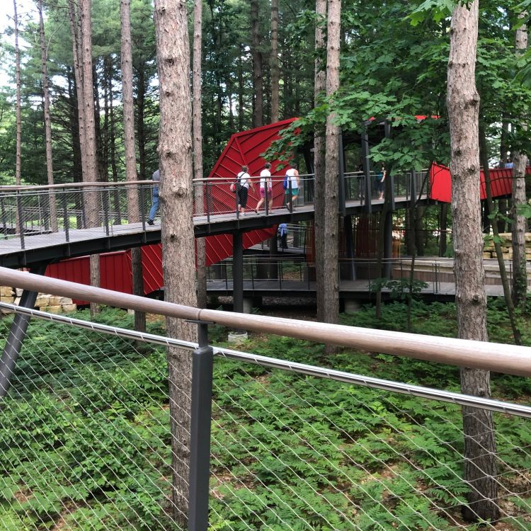 A tall foot bridge spans a forested area