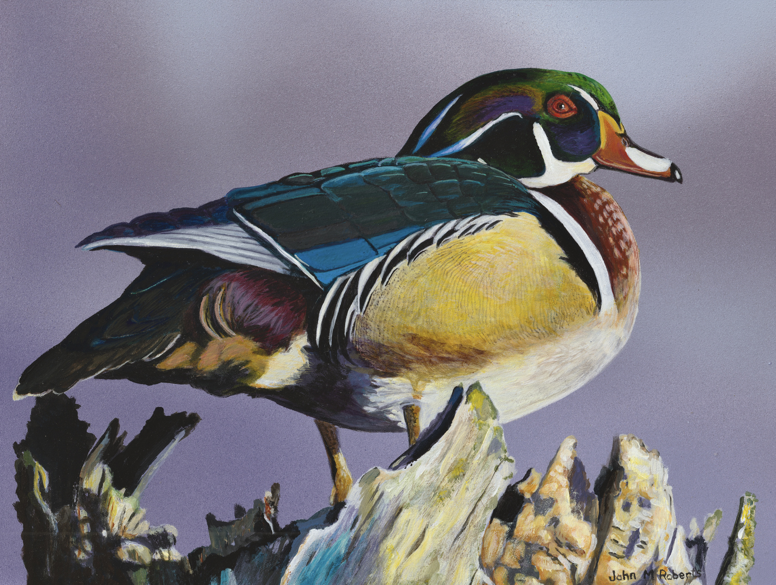 Michigan duck stamp continues to make its mark on waterfowl conservation