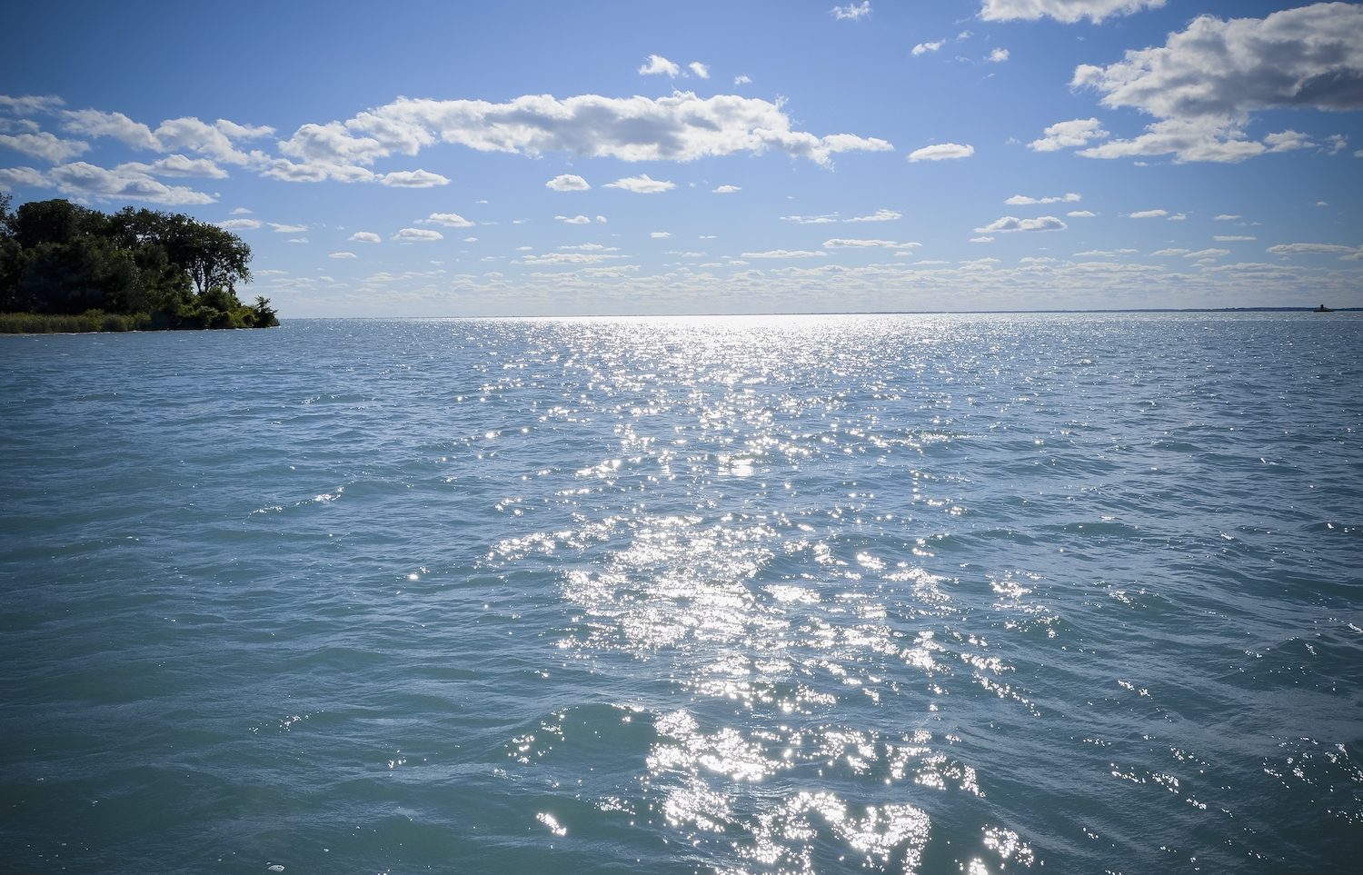 Amateur Fishing Championship event at Lake St. Clair showcases MI conservation efforts